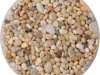 6mm-golden-pearl